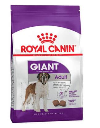 Ξηρά τροφή σκύλου Royal Canin Giant Adult