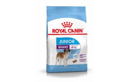 Ξηρά τροφή σκύλου Royal Canin Junior Giant