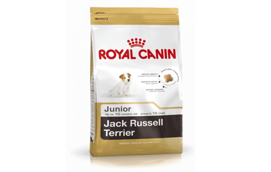 ROYAL-CANIN-JACK-RUSSEL-TERRIER-adult.png