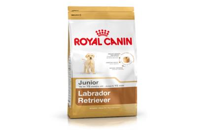 ROYAL CANIN LABRADOR JUNIOR 12kg 1
