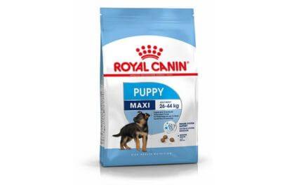 Ξηρά τροφή σκύλου Royal Canin Maxi Puppy
