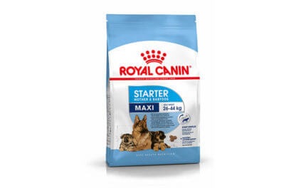 Ξηρά τροφή σκύλου Royal Canin Maxi Starter